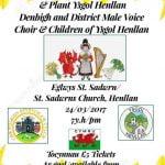 Henllan School Concert